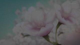 氷菓 #01 ノイズまみれ